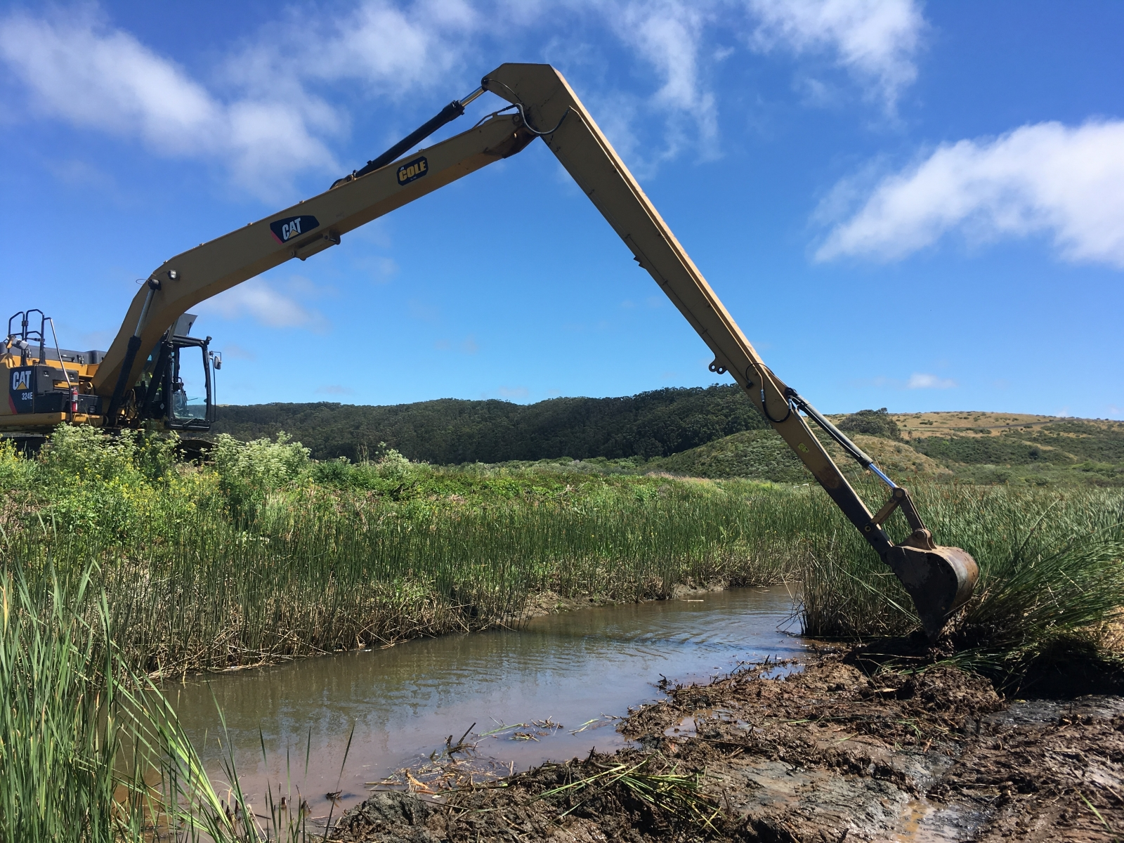Long-reach excavator removing vegetation, June 2019.