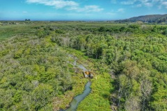 Aerial View of Butano Creek pilot channel clearing, June 2019