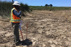 Project Manager Jim Robins surveys progress, July 2019