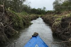Kayaking Pilot Channel