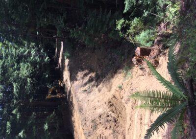 DG Week 2: Crossing excavation (looking east).