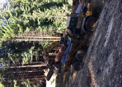 DG Week 3: Loading dump truck.