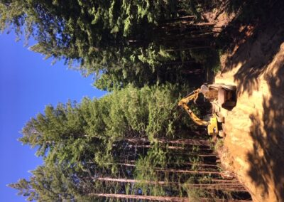 DG Week 3: Excavation.