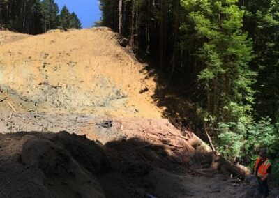 DG Week 6: Panoramic from excavated pit.