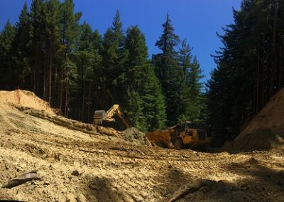 DG Week 6: Another panoramic from the excavation pit.