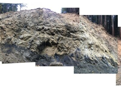 DG Week 11: Composite panoramic from down in the excavated crossing.