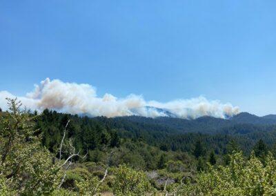DG Week 15: CZU Fires: View of Butano Ridge (from N) (Wed, 8/19/2020)