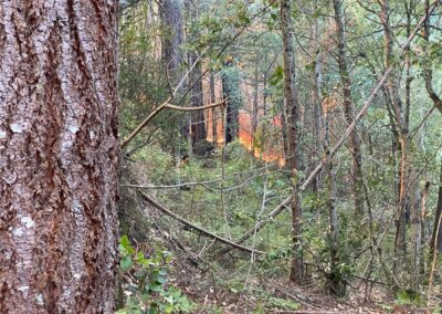 DG Week 15: CZU Fires: Fire burning toward Dark Gulch -pic4 (Wed, 8/19/2020)
