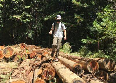 DG Week 14: Joe Issel (RCD) looking at logs for large woody debris habitat restoration