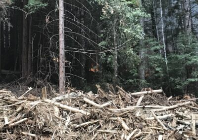 DG Week 16: CZU Fires: Fire approaching slash pile at Dark Gulch (Sat, 8/22/2020)